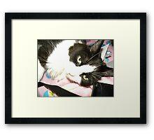 My Chloe Framed Print