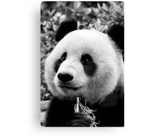 The Panda Canvas Print