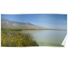 Wildflowers At The Lake Poster