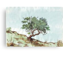 In Nature everything is perfect Canvas Print