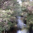 Donnelly River, West Australia by SoulSparrow