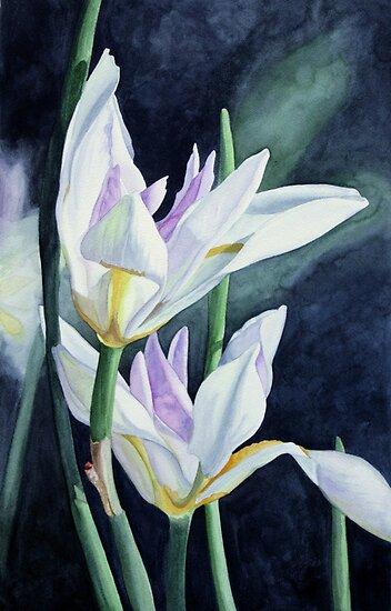 Botanicals 2 by Jan Lawnikanis