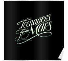 Teenagers From Mars Poster