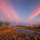 Tafelkop Twilight by Rob  Southey