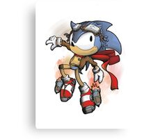 Steam the HedgeHog Canvas Print
