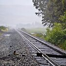 Raining on the Iron Trail by Howard Lorenz