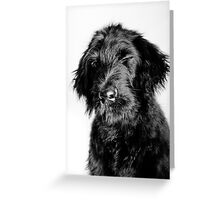 i saw you in the shower Greeting Card