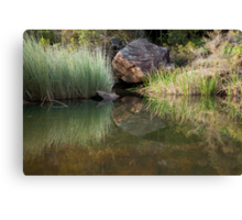 Glenbrook Creek Canvas Print