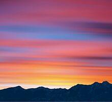 Mountain Dew by David Alexander Elder