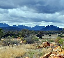 The Warrumbungle Range by Terry Everson