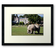 Lets go home, Time for Tea Framed Print