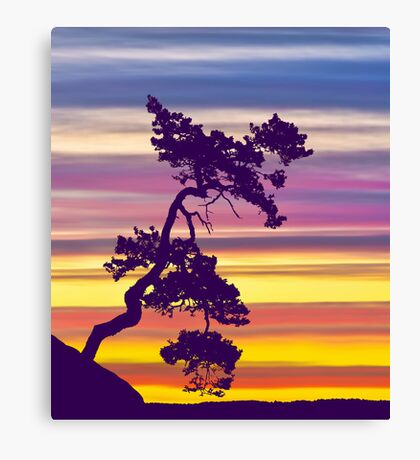 One Tree Hill Sunrise Canvas Print