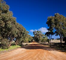 Country Laneway, Victoria by morealtitude