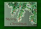 Merry Christmas Card - Baby Spruce Cones by MotherNature