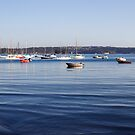 Rose Bay Boats by Adriano Carrideo