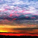 Colourful skies over NYC  by Alberto  DeJesus