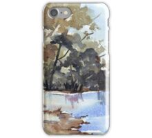Why the environment has to be preserved iPhone Case/Skin