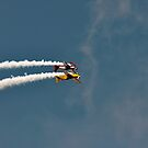 Chatsworth Aerobatics ii by Chris Monks