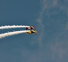 Chatsworth Aerobatics ii by Chris Monks