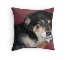 Scoobie Throw Pillow
