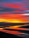 Wetlands Twilight by David Alexander Elder
