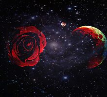 A Rose and The Planets Converge in Empty Space by Scott Mitchell