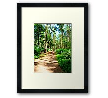 Wak in the Forest Framed Print