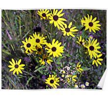 Natural Bouquet Poster