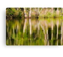 Reflection on Brice's Creek Canvas Print
