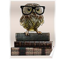 Adorable Nerdy Owl with Glasses Poster
