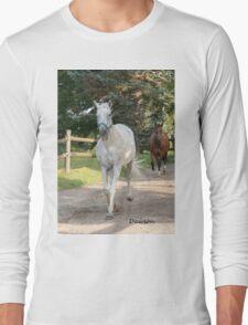 Dawson (2000 - 2011)- NNEP  Ottawa, ON Long Sleeve T-Shirt