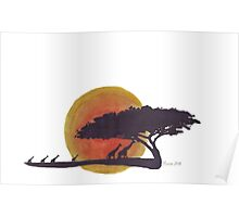 African Sunset silhouettes Poster