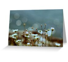 Wild flowers by the waterline Greeting Card