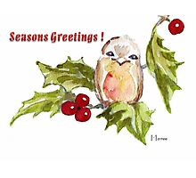 1 Little Bird - Season's Greetings! Photographic Print