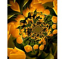 Dance of the Yellow Tulips Photographic Print