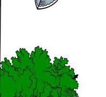 O'Callaghan (Cork)  Sticker