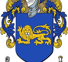 O'Carrie (Connaught) by HaroldHeraldry