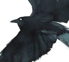 Crow Wings Sticker