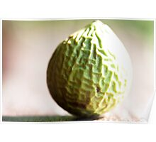 Wrinkly Green Beach Fruit Poster