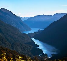 Doubtful Sound from Wilmott Pass by Odille Esmonde-Morgan