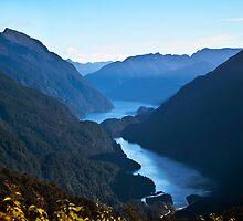 Doubtful Sound from Wilmott Pass by Odille Esmonde-Morgan