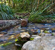 Woolgoolga Creek by Normf