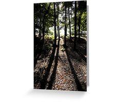 Shadows in the woods. The Wrekin Shropshire. Greeting Card