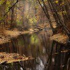 Autumn Stream by Bob Dilworth