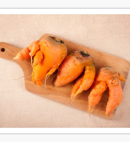 raw deformed carrot roots Sticker