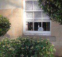 Bacon Cottage Window by Wendy Dyer