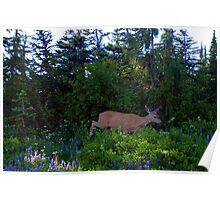 """""""Deer"""" Poster"""
