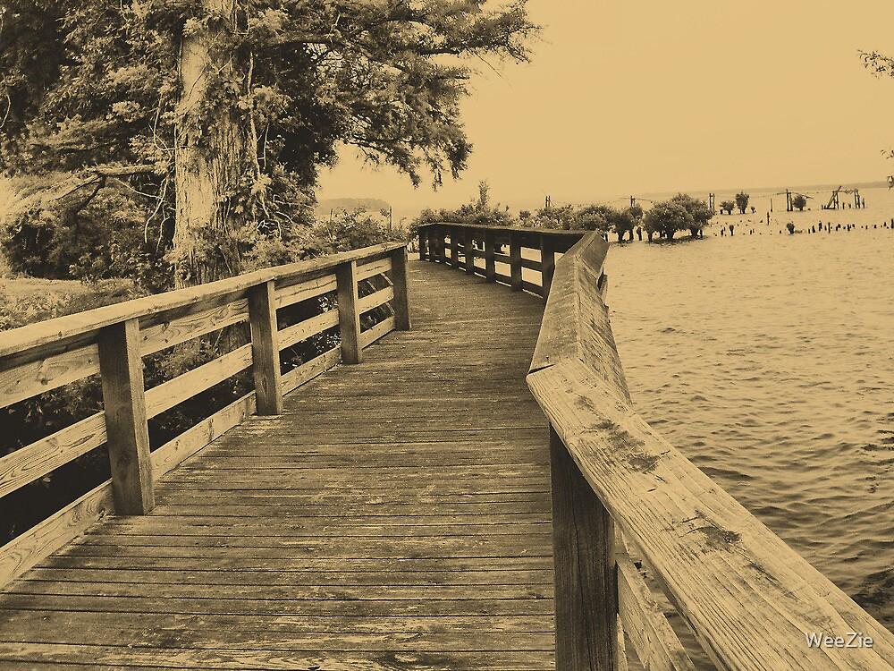 River Boardwalk by WeeZie