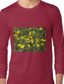 Thickets of small yellow flowers Picris Rigida Long Sleeve T-Shirt