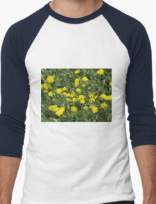 Thickets of small yellow flowers Picris Rigida Men's Baseball ¾ T-Shirt